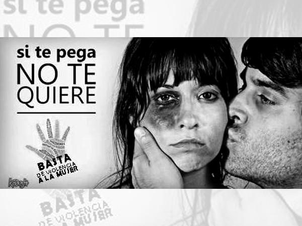 Violencia de genero observatorio provincial de violencia contra las mujeres - Casos de violencia de genero ...